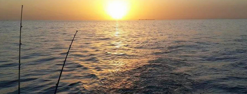 דייג מסירה בשקיעה
